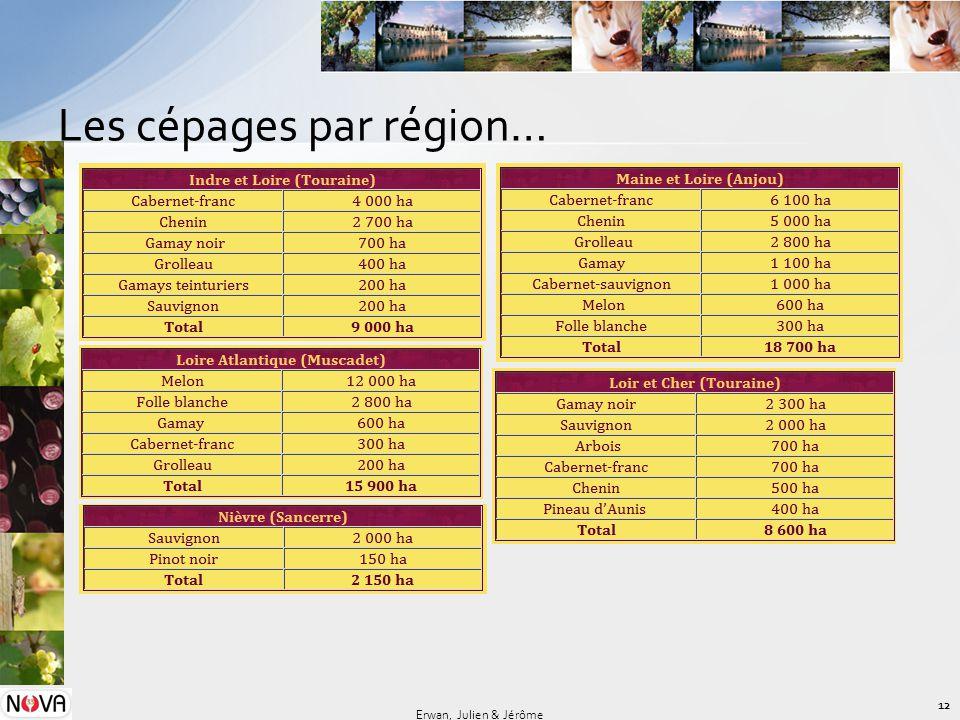 Les cépages par région… 12 Erwan, Julien & Jérôme