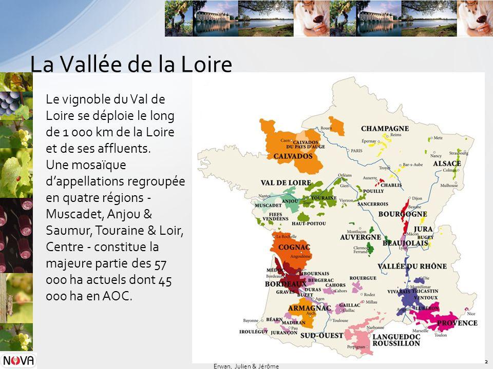 La Vallée de la Loire 2 Erwan, Julien & Jérôme Le vignoble du Val de Loire se déploie le long de 1 000 km de la Loire et de ses affluents. Une mosaïqu