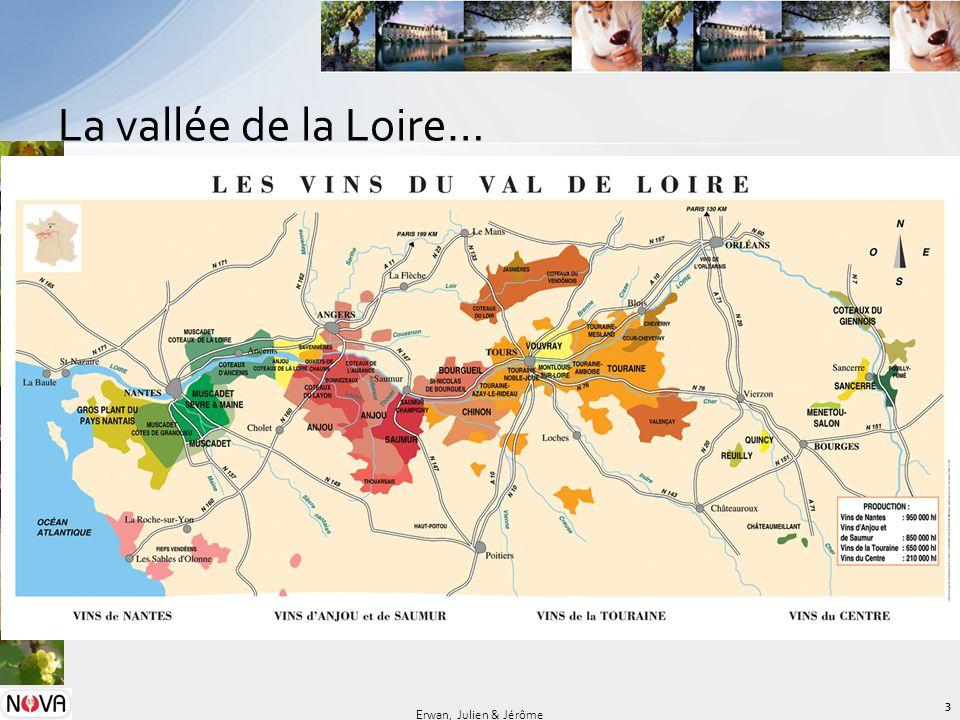 La vallée de la Loire… 3 Erwan, Julien & Jérôme