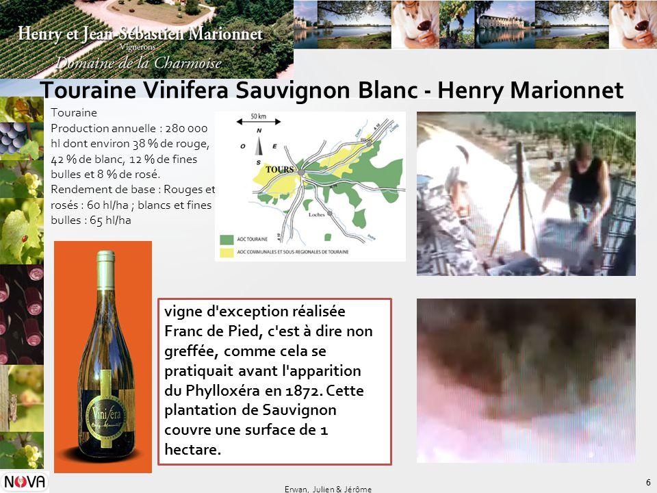 Touraine Vinifera Sauvignon Blanc - Henry Marionnet 6 Erwan, Julien & Jérôme Touraine Production annuelle : 280 000 hl dont environ 38 % de rouge, 42