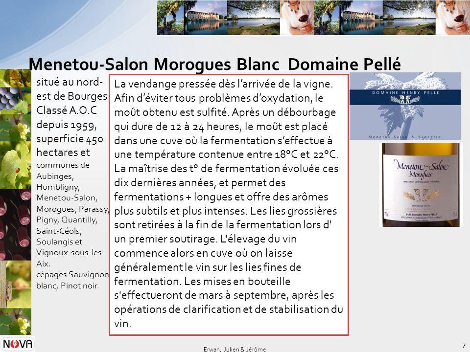 Menetou-Salon Morogues Blanc Domaine Pellé 7 Erwan, Julien & Jérôme situé au nord- est de Bourges Classé A.O.C depuis 1959, superficie 450 hectares et