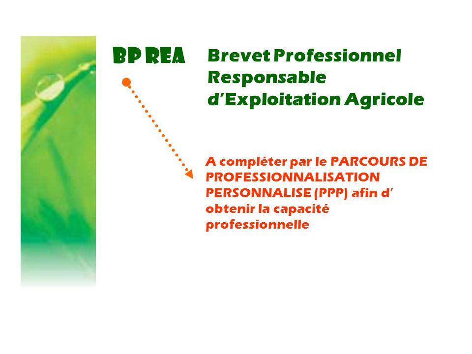 BP REA Brevet Professionnel Responsable d'Exploitation Agricole A compléter par le PARCOURS DE PROFESSIONNALISATION PERSONNALISE (PPP) afin d' obtenir