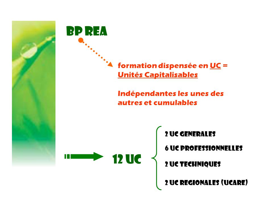BP REA formation dispensée en UC = Unités Capitalisables Indépendantes les unes des autres et cumulables 12 UC 2 UC GENERALES 6 UC PROFESSIONNELLES 2