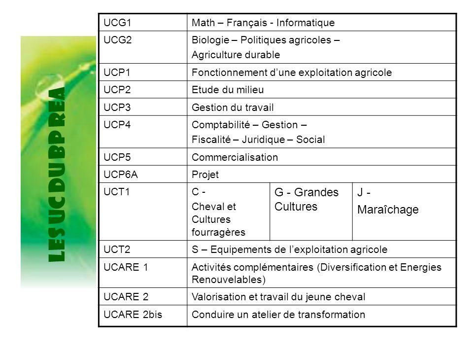 LES UC du BP REA UCG1Math – Français - Informatique UCG2Biologie – Politiques agricoles – Agriculture durable UCP1Fonctionnement d'une exploitation ag
