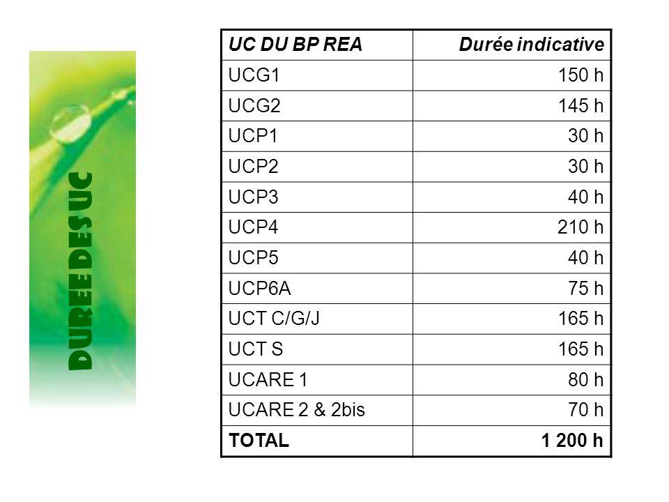 DUREE DES UC UC DU BP READurée indicative UCG1150 h UCG2145 h UCP130 h UCP230 h UCP340 h UCP4210 h UCP540 h UCP6A75 h UCT C/G/J165 h UCT S165 h UCARE 180 h UCARE 2 & 2bis70 h TOTAL1 200 h