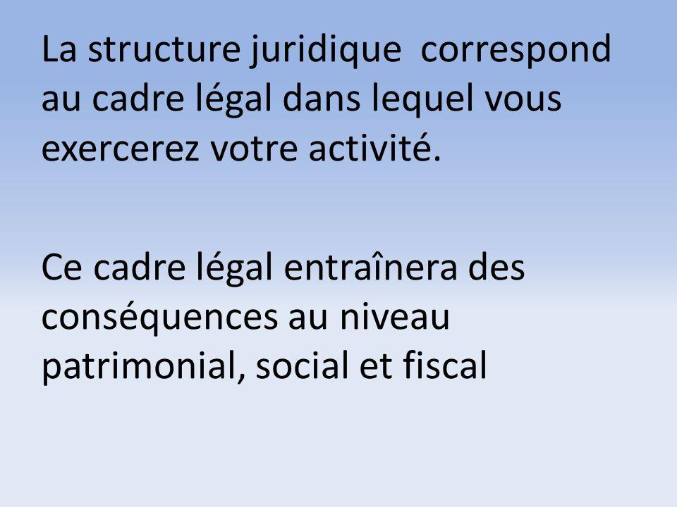 La structure juridique correspond au cadre légal dans lequel vous exercerez votre activité. Ce cadre légal entraînera des conséquences au niveau patri