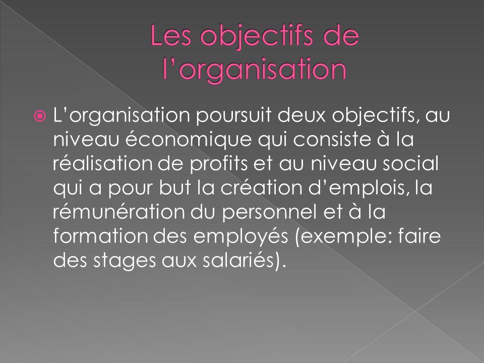  L'organisation poursuit deux objectifs, au niveau économique qui consiste à la réalisation de profits et au niveau social qui a pour but la création d'emplois, la rémunération du personnel et à la formation des employés (exemple: faire des stages aux salariés).