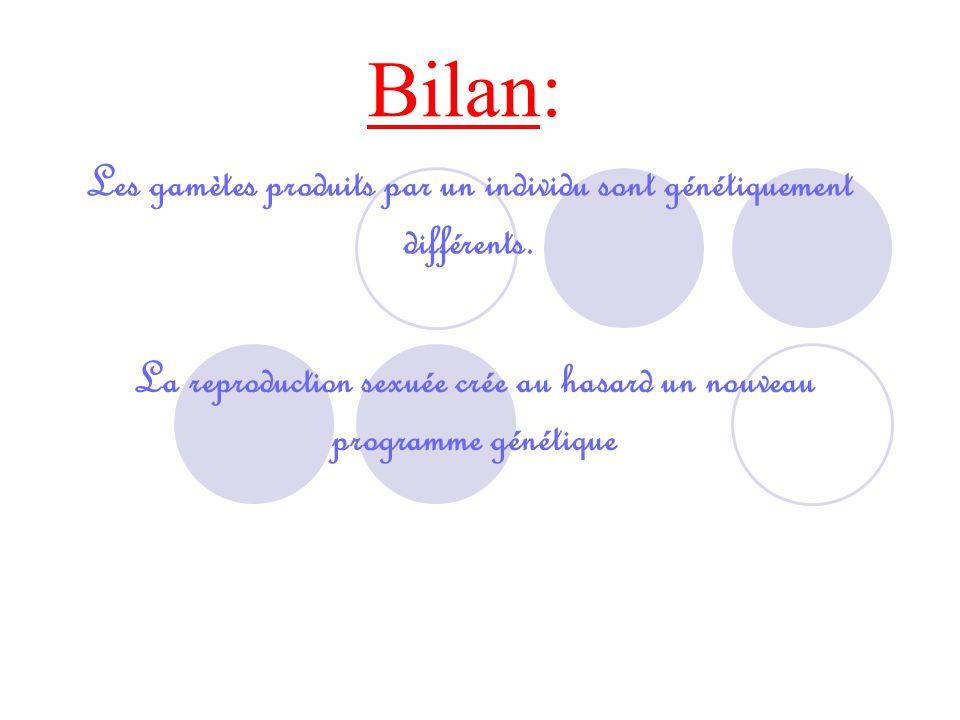 Activité n°3 (suite)  Croisement possible Fécondation caractères de l'enfant : Groupe B-B-