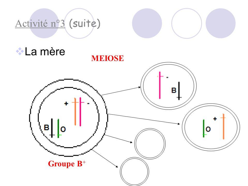 Activité n° : des assortiments génétiques aléatoires (étude des groupes sanguins)  Le père : Groupe A + 1 9 MEIOSE