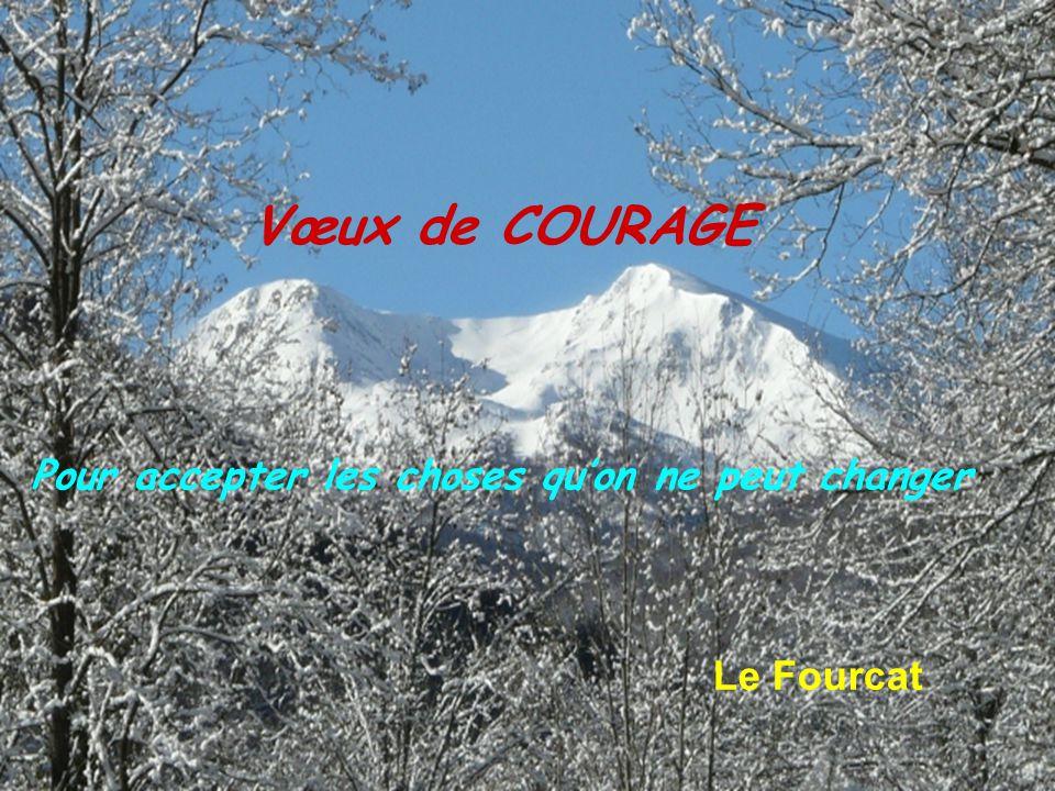 Vœux de COURAGE Le Fourcat Pour accepter les choses qu'on ne peut changer