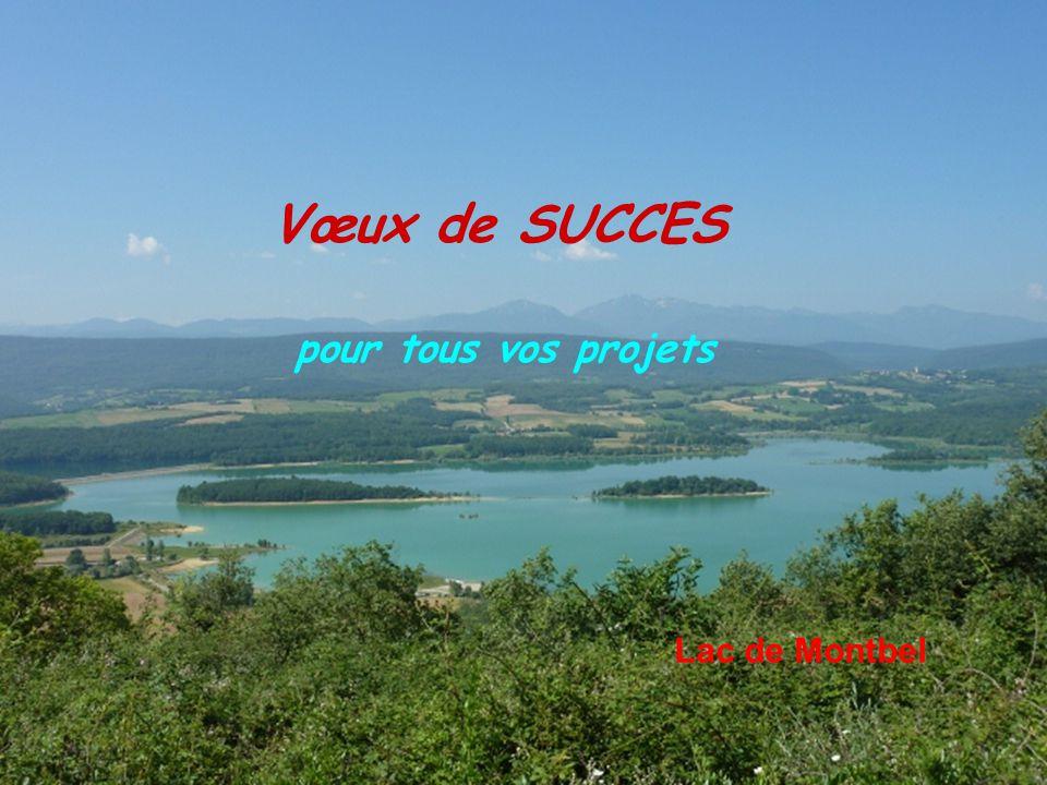 Vœux de SUCCES pour tous vos projets Lac de Montbel
