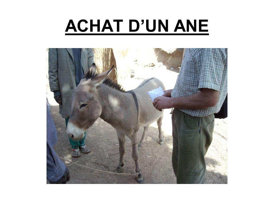 ACHAT D'UN ANE