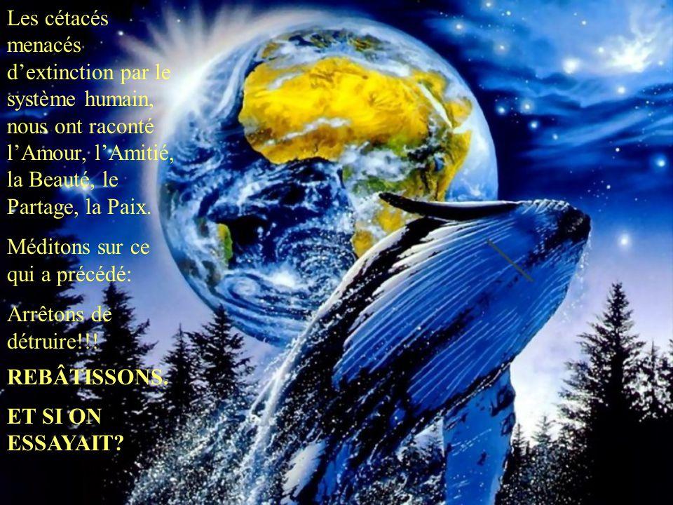 Les cétacés menacés d'extinction par le système humain, nous ont raconté l'Amour, l'Amitié, la Beauté, le Partage, la Paix. Méditons sur ce qui a préc