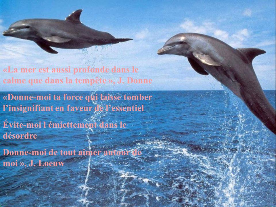 «La mer est aussi profonde dans le calme que dans la tempête », J. Donne «Donne-moi ta force qui laisse tomber l'insignifiant en faveur de l'essentiel