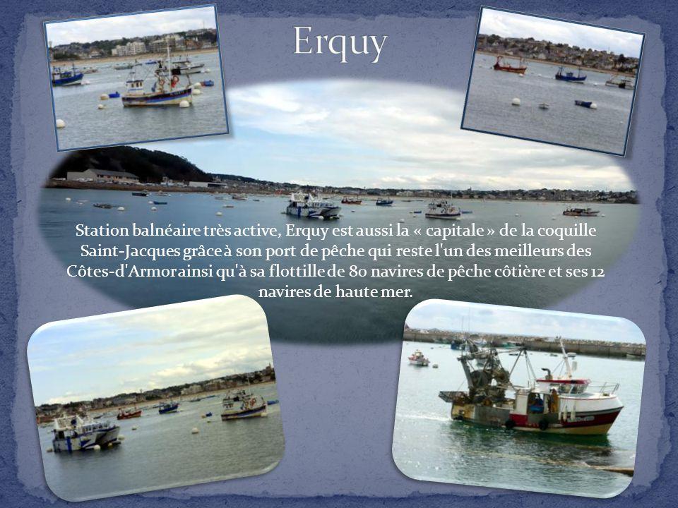 Station balnéaire très active, Erquy est aussi la « capitale » de la coquille Saint-Jacques grâce à son port de pêche qui reste l un des meilleurs des Côtes-d Armor ainsi qu à sa flottille de 80 navires de pêche côtière et ses 12 navires de haute mer.