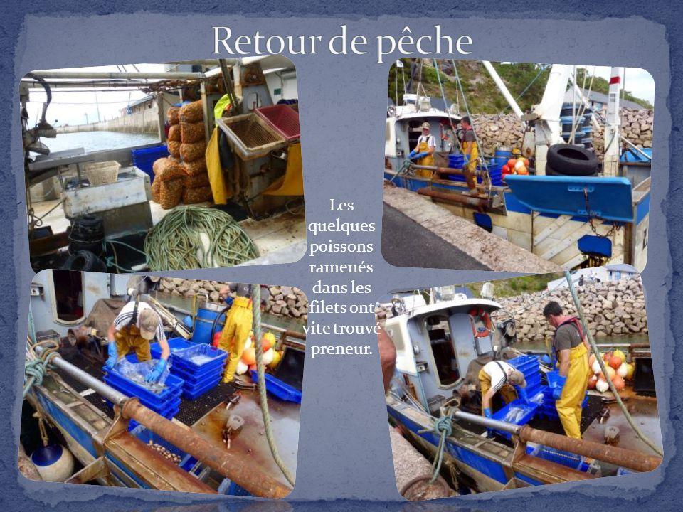 Station balnéaire très active, Erquy est aussi la « capitale » de la coquille Saint-Jacques grâce à son port de pêche qui reste l'un des meilleurs des
