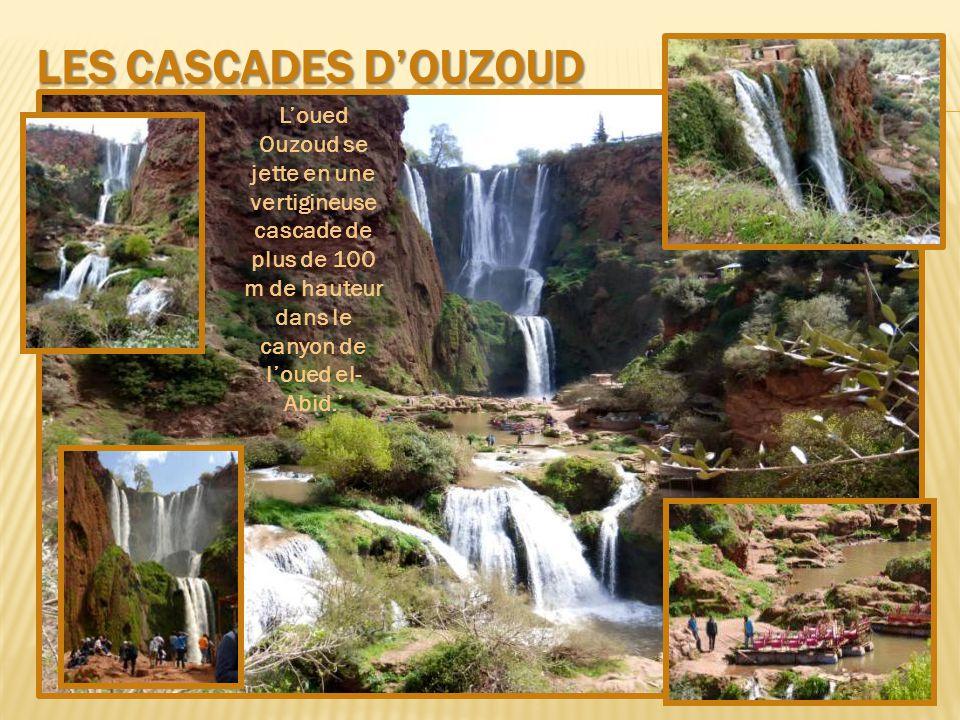 L'oued Ouzoud se jette en une vertigineuse cascade de plus de 100 m de hauteur dans le canyon de l'oued el- Abid.'