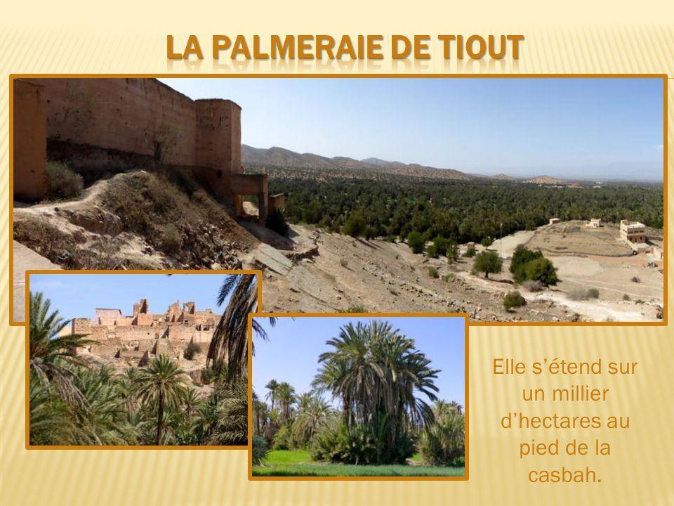 La muraille qui entoure la vieille ville mesure 7 km et est percée de 5 portes monumentales
