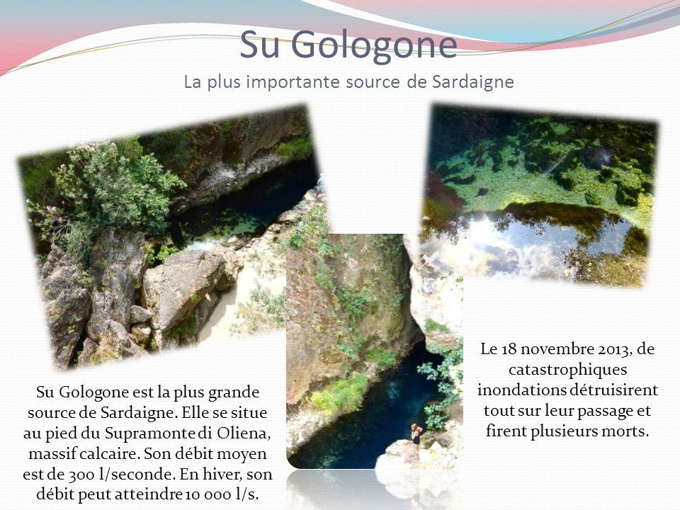 Su Gologone Rocher de l'éléphant Rocher de l'ours La vallée de la lune La grotte de Neptune