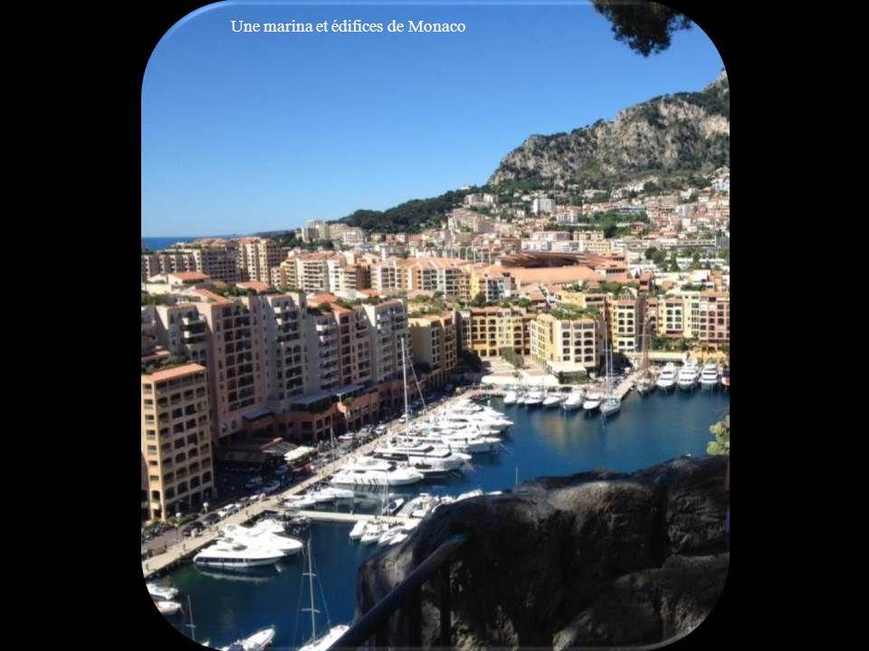 Une marina et édifices de Monaco
