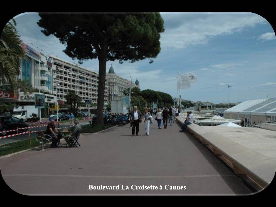Paysage entre St-Raphaël et Cannes