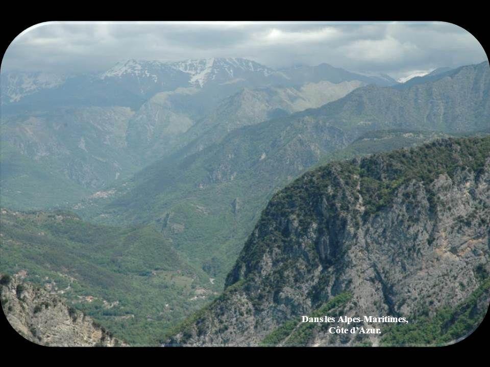 Dans les Alpes-Maritimes, Côte d'Azur.
