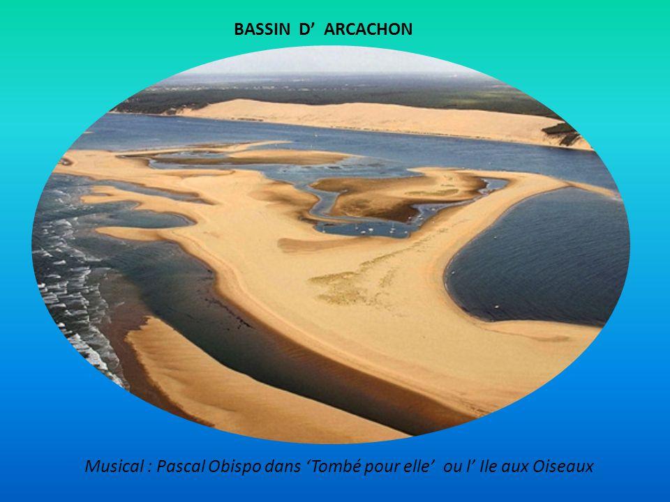 Musical : Pascal Obispo dans 'Tombé pour elle' ou l' Ile aux Oiseaux BASSIN D' ARCACHON