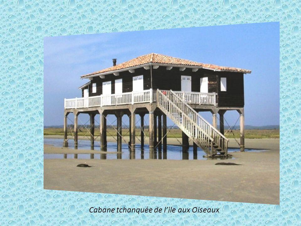 Ile aux Oiseaux : d'aspect sauvage, bateaux et cabanes tchanquées, sa superficie varie avec les marées.