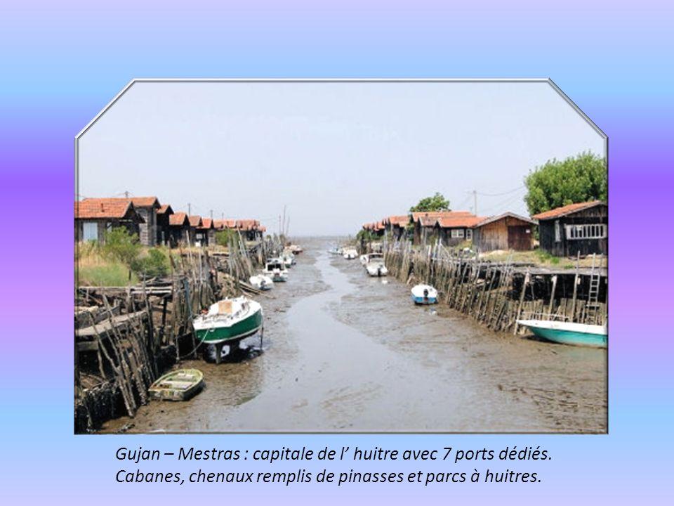 Les ' Pinassottes ' pinasses à voile, servant pour les régates organisées par les villages du Bassin.