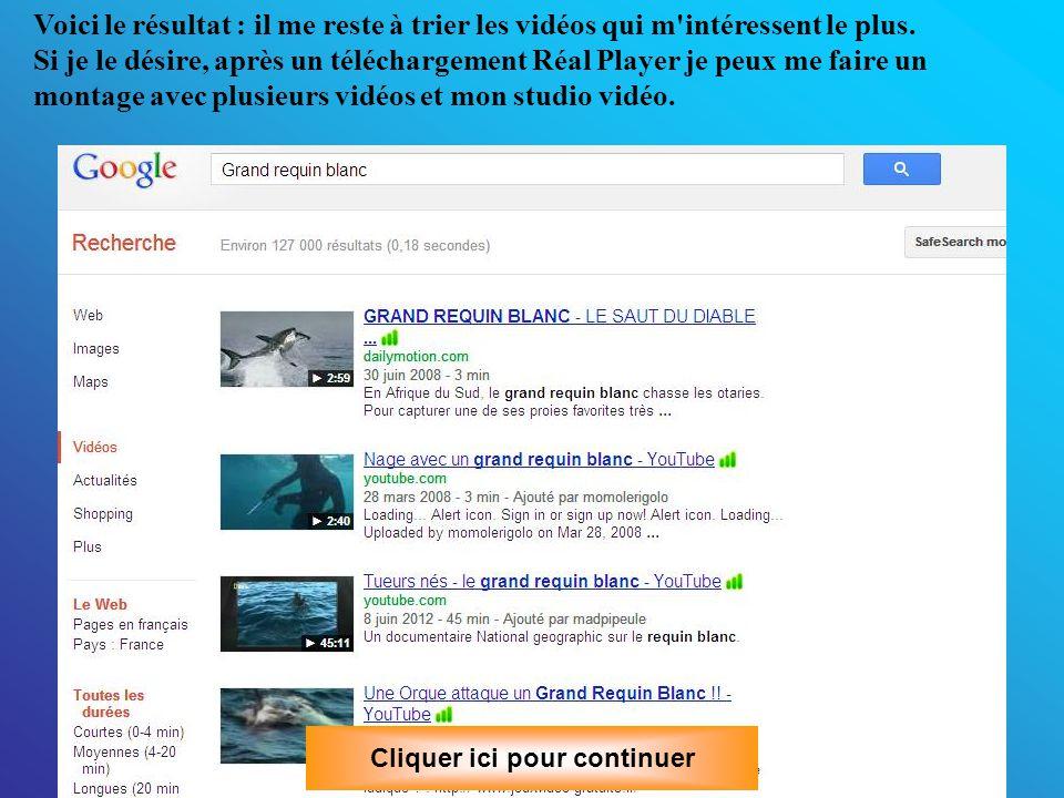 Troisième exemple: Je suis impressionné par le grand requin blanc et j'aimerai bien voir des reportages sur lui! C'est très simple, je vais sur Google