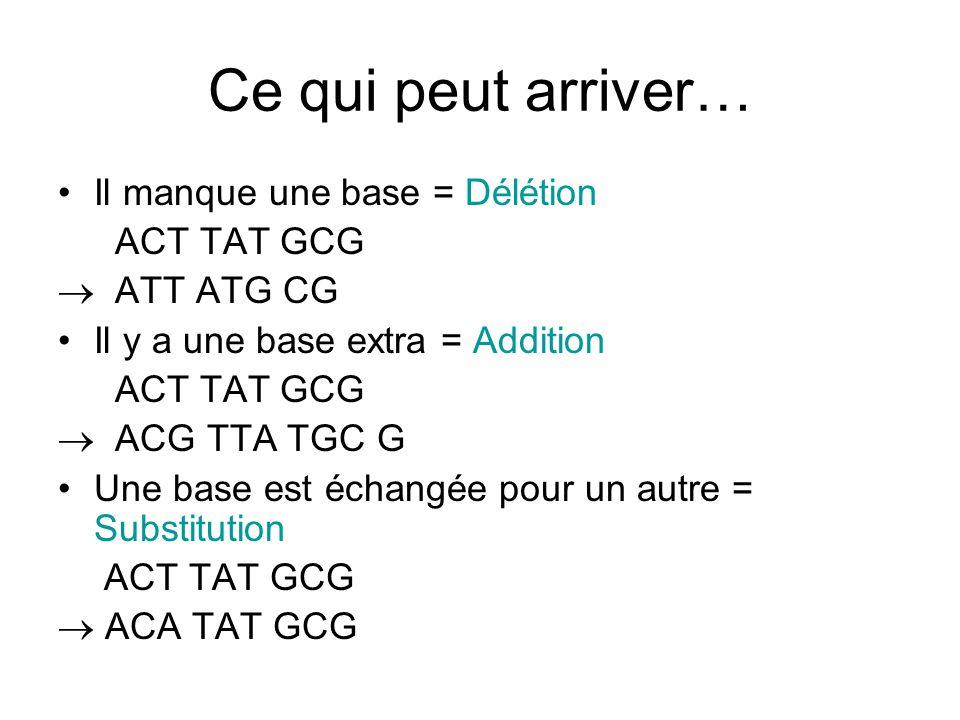 Ce qui peut arriver… Il manque une base = Délétion ACT TAT GCG  ATT ATG CG Il y a une base extra = Addition ACT TAT GCG  ACG TTA TGC G Une base est