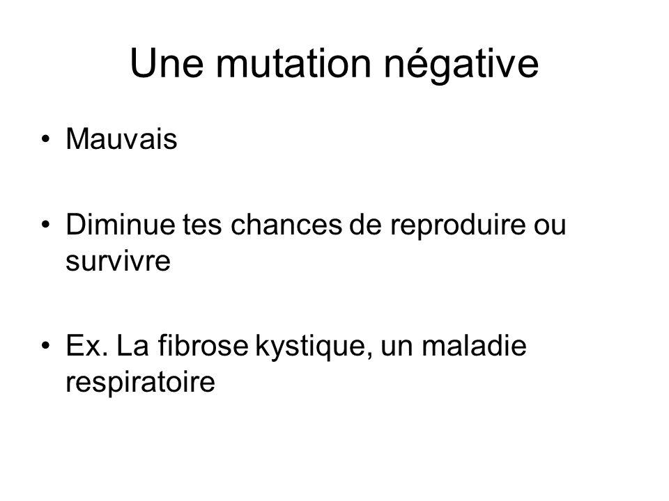 Une mutation négative Mauvais Diminue tes chances de reproduire ou survivre Ex. La fibrose kystique, un maladie respiratoire