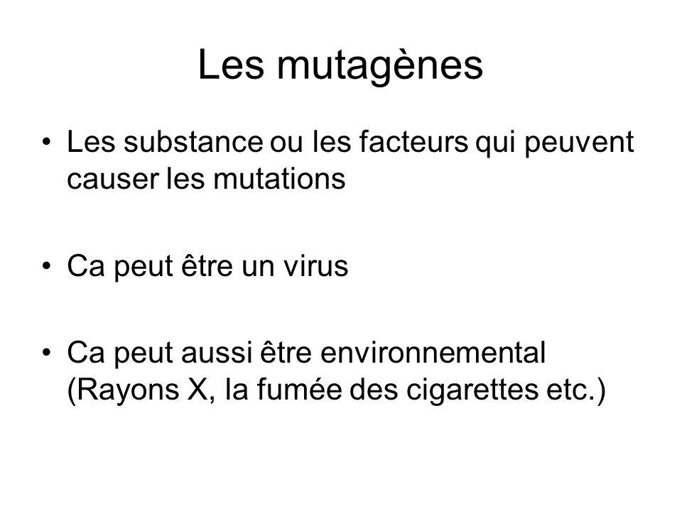 Les mutagènes Les substance ou les facteurs qui peuvent causer les mutations Ca peut être un virus Ca peut aussi être environnemental (Rayons X, la fu