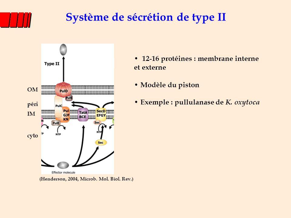 Système de sécrétion de type II 12-16 protéines : membrane interne et externe Modèle du piston Exemple : pullulanase de K. oxytoca (Henderson, 2004, M