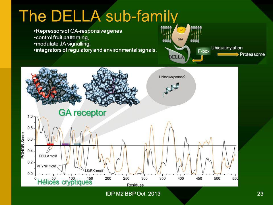 The DELLA sub-family IDP M2 BBP Oct.
