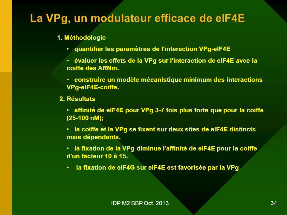 IDP M2 BBP Oct.2013 34 La VPg, un modulateur efficace de eIF4E 1.