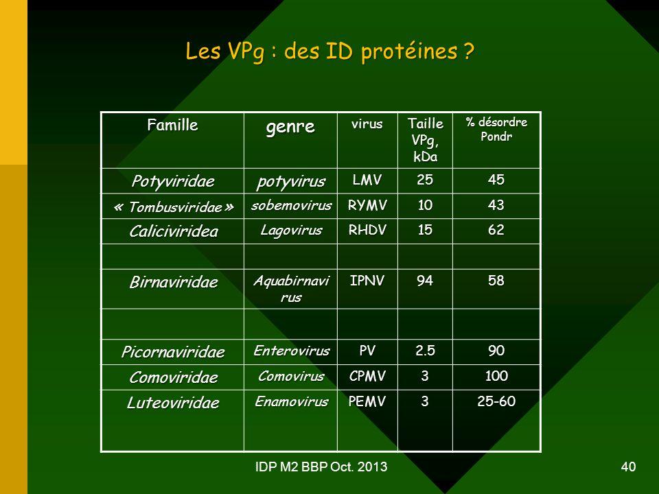 IDP M2 BBP Oct.2013 40 Les VPg : des ID protéines .