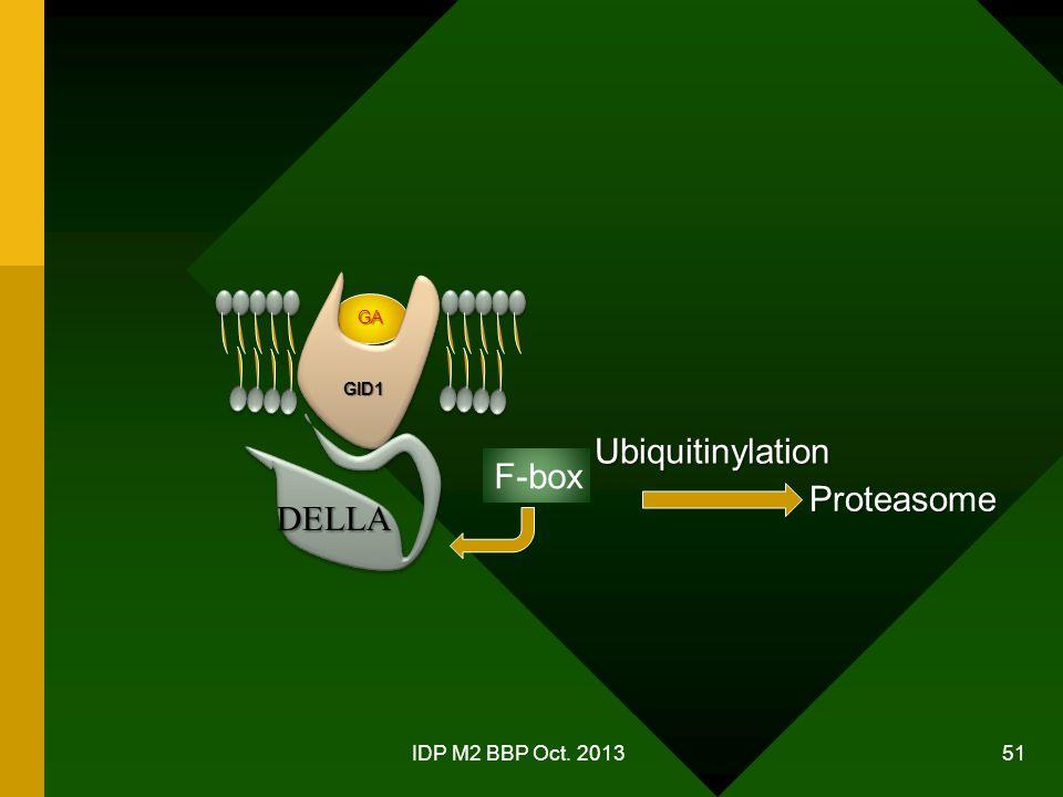 IDP M2 BBP Oct. 2013 51 GA GID1 DELLA F-box Ubiquitinylation Proteasome