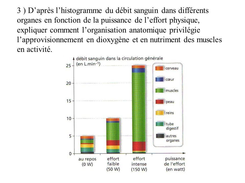 3 ) D'après l'histogramme du débit sanguin dans différents organes en fonction de la puissance de l'effort physique, expliquer comment l'organisation