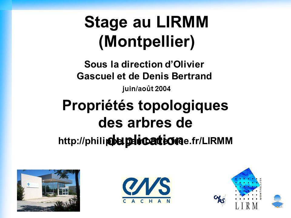 Stage au LIRMM (Montpellier) Sous la direction d'Olivier Gascuel et de Denis Bertrand juin/août 2004 Propriétés topologiques des arbres de duplication http://philippe.gambette.free.fr/LIRMM