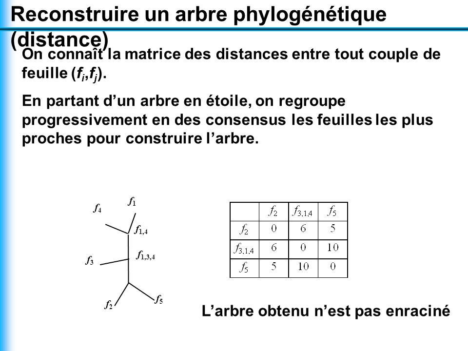 Reconstruire un arbre phylogénétique (distance) On connaît la matrice des distances entre tout couple de feuille (f i,f j ).
