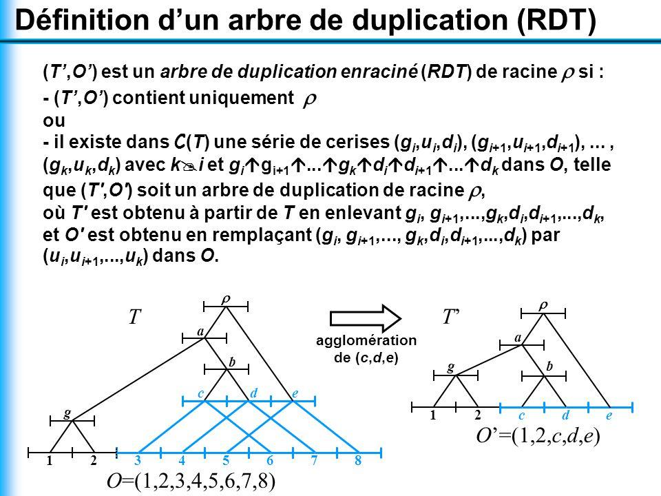 Définition d'un arbre de duplication (RDT) (T',O') est un arbre de duplication enraciné (RDT) de racine  si : - (T',O') contient uniquement  ou - il existe dans C(T) une série de cerises (g i,u i,d i ), (g i+1,u i+1,d i+1 ),..., (g k,u k,d k ) avec k  i et g i  g i+1 ...