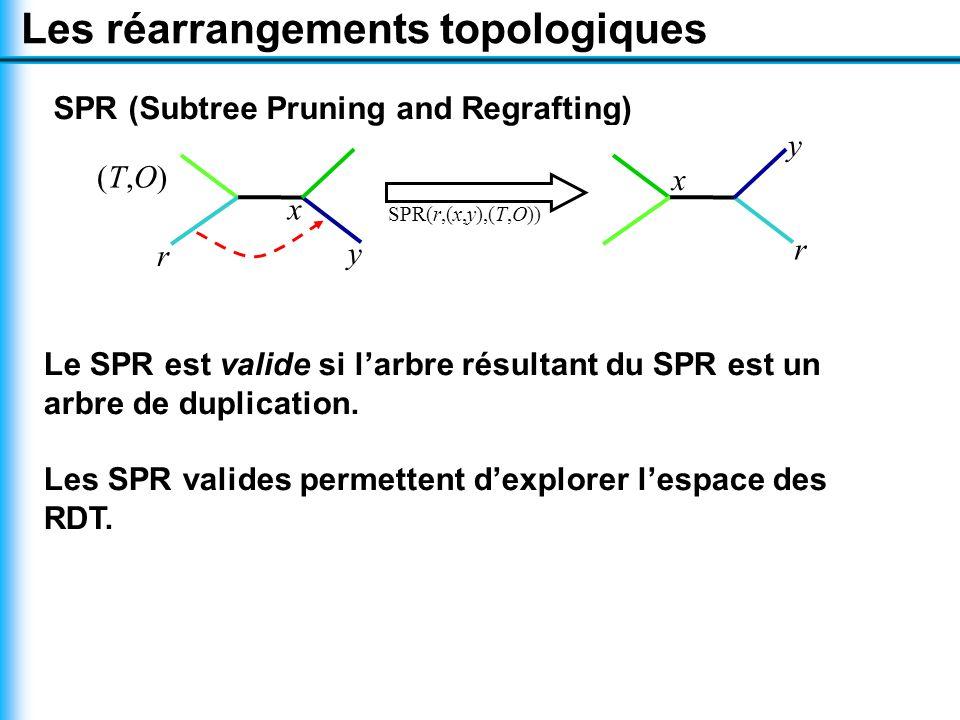 Les réarrangements topologiques SPR (Subtree Pruning and Regrafting) SPR(r,(x,y),(T,O)) Le SPR est valide si l'arbre résultant du SPR est un arbre de duplication.