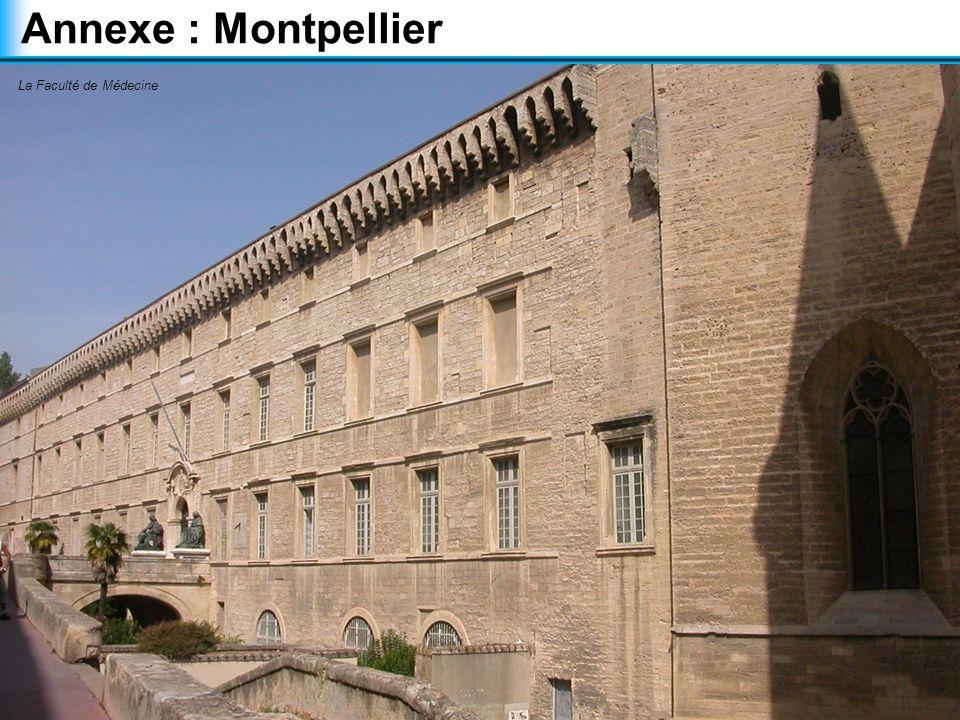 Annexe : Montpellier La Faculté de Médecine