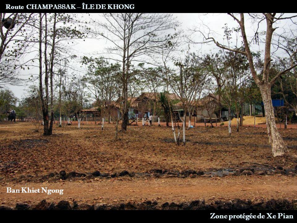 Route nationale 13 Route CHAMPASSAK – ÎLE DE KHONG Vue sur la zone humide