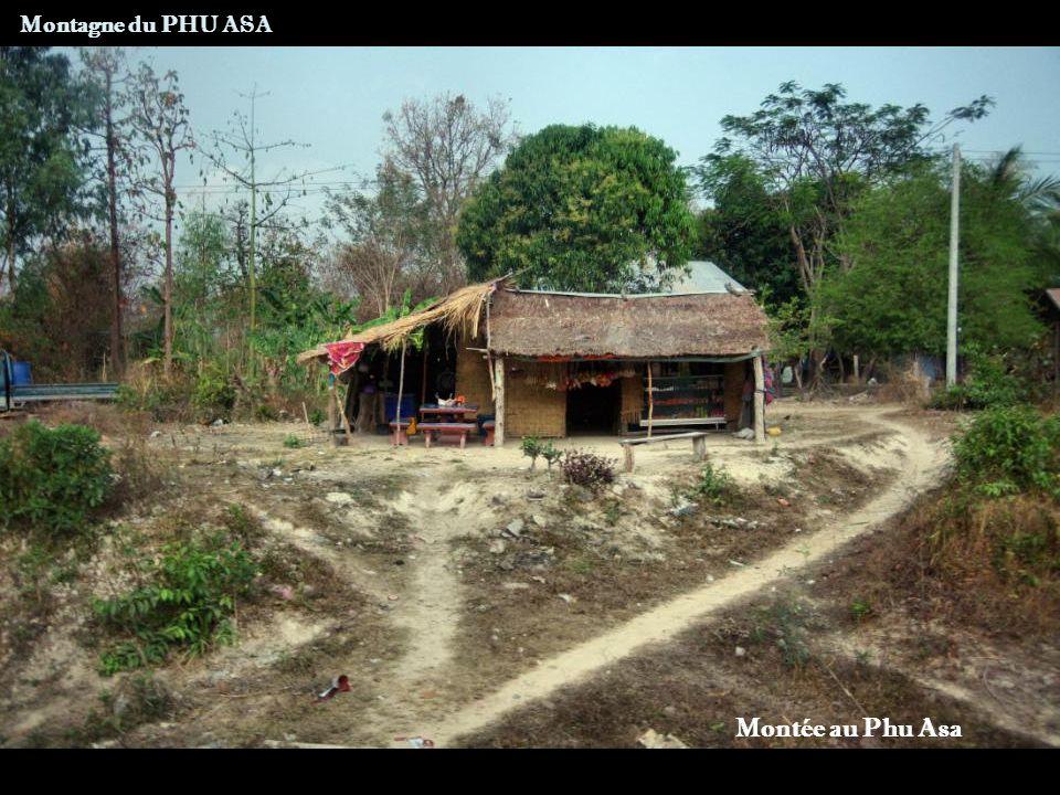 Montagne du PHU ASA Vue sur la zone humide