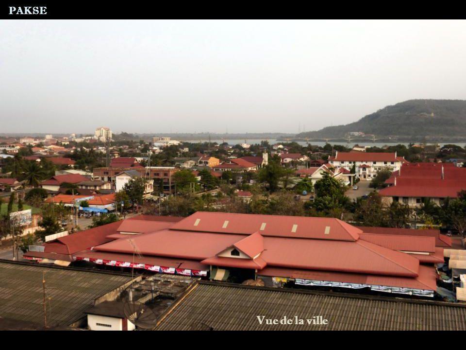 Montagne du PHU ASA Montée au Phu Asa