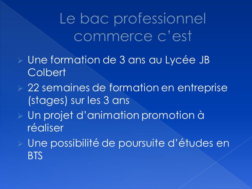 BAC PROFESSIONNEL COMMERCE Lycée professionnel JEAN BAPTISTE COLBERT