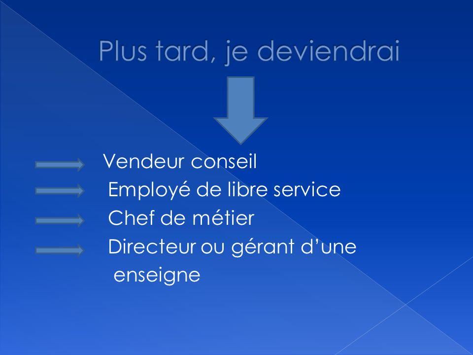 Vendeur conseil Employé de libre service Chef de métier Directeur ou gérant d'une enseigne