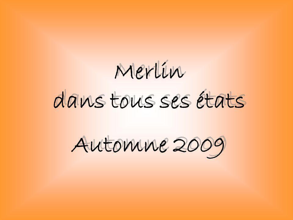 Merlin dans tous ses états Automne 2009 Merlin dans tous ses états Automne 2009